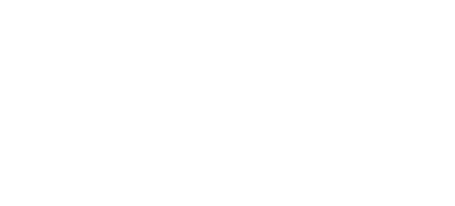 Focused investment in hotel assets that share 'Trust Value' created by 'Trust Quality'